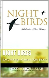 Night Birds cover