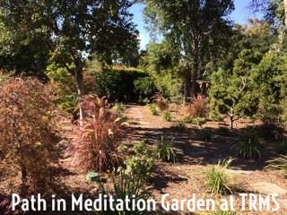 path in meditation garden